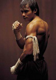 Profile: Tony Jaa
