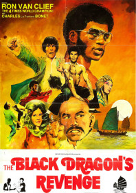 The Black Dragon's Revenge (1975)