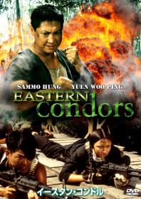 Eastern Condors (1987)